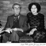 بارگیری رایگان «فرهنگ ادبیات فارسی» دکتر زهرای خانلری (کیا)